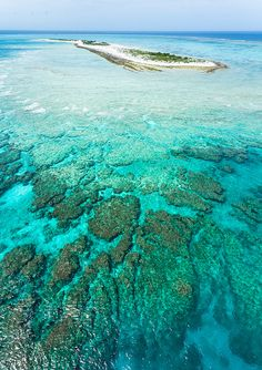 Deserted island, fringing coral reef, clear blue water (and lots of fish) from the sky! by ippei + janine, via Flickr