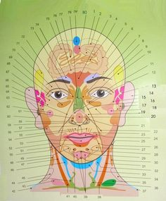 The ancient Chinese medical art of Acupuncture has an important place in alternative recovery even today. The supporters of acupuncture rave about the advantages and effectiveness of getting acupuncture treatment sessions. Gesicht Mapping, Sigmoid Colon, Face Mapping, Chinese Medicine, Reflexology, Alternative Health, Alternative News, Acne Treatment, Health Problems