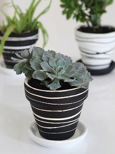 20 maceteros pintados para tus plantas