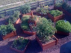 raised beds - drawers
