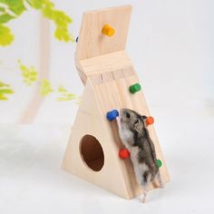 I like the idea of this, a little hidey that they can also climb. It gives me a good idea for a home made toy.  Keersi Climbing Ladder Toy Wooden House For Pet Dwarf Hamster Gerbil Rat Chinchillas Guinea Pig Squirrel Small Animal Cage Chew Toys: Amazon.co.uk: Pet Supplies