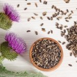 Milk thistle is one of the most widely researched plant medicines today.The Mayo Clinic website reports 18 different areas of health research involving milk thistle that haveyielded good scientific evidence for its use or scientific evidence that is unclear but promising. 18!Milk thistle seeds are loaded with beneficial nutrients. For ...