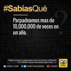 ✔ Mira Sabias Que El Cerebro, Que Significa Curiosidades y Noticias Curiosas Colombia ➬ http://www.cienic.com/sabias-que-aspecto-tiene-un-atomo/