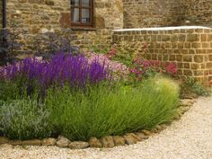 Lavender and gravel garden style is how I want my back yard!