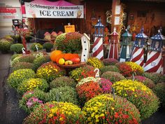 You don't want to miss Sol's in Berlin during September & October! Berlin Ohio, Holmes County, Amish Country, Homemade Ice Cream, Wonderful Places, Pumpkins, September, Fresh, Home Ice Cream