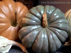 Under The Table and Dreaming: Polishing Pumpkins and Gourds for Indoor Use {preserving pumpkins}