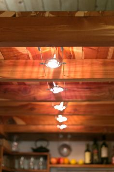Overhead Kitchen Lighting - Travis and Brittany Pyke Tiny Home