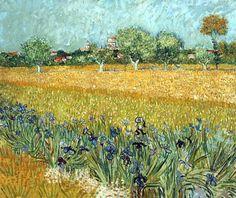 Campo con Flores Cerca de Arles