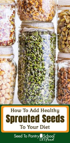 Sprouted seeds can bring fresh vegetables into your diet any time. We offer five tasty recipes. Sprout Recipes, Plant Based Recipes, 400 Calorie Meals, Nutrition For Runners, Emergency Food Supply, Dried Vegetables, Gourmet Breakfast, Vegetable Nutrition, Survival Food