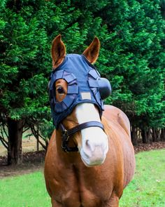 Equine eye protection system Interchangeable cup by NagHorseRanch