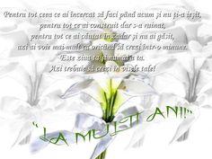 Birthday Wishes, Happy Birthday, Happy Brithday, Urari La Multi Ani, Happy Birthday Celebration, Happy B Day