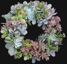 The Pink Chalkboard: Succulent Wreaths Succulent Bowls, Succulent Bouquet, Succulent Gardening, Planting Succulents, Container Gardening, Planting Flowers, Succulent Ideas, Succulent Plants, Lawn And Garden