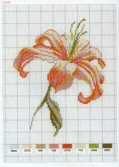 [flor-ponto-cruz-grafico-26%255B3%255D.jpg]