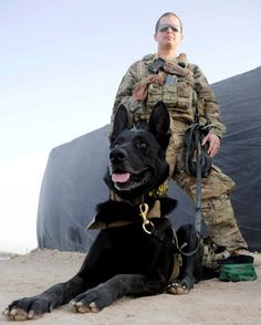 U.S. Air Force Staff Sgt. Larry Harris, a Military Working Dog handler, with his dog Aaron prior to training at Kandahar Airfield, Afghanistan on July 9, 2012. (U.S. Air Force photo/TSgt. Stephen Hudson)