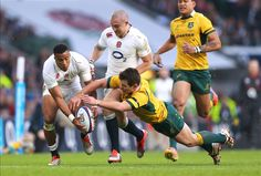 Test-match: nel giugno 2016 sarà tre volte Australia-Inghilterra - On Rugby Tinder Account, Tinder Profile, Australia Rugby, Tinder Match, Anta, Tinder Dating, Getting Bored, Profile Photo