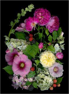 Pauline Runkle's Front Garden - La Vie En Rose (Pinks) 2 - Scanner Photography By Ellen Hoverkamp