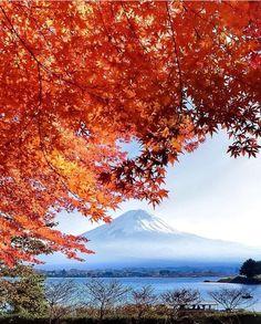 Fall in Yamanashi - Japan .  #wonderful_places #amazingplaces #travel #instatravel #travelling #japan #world