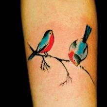 Incognito Tattoo - Colour Tattoo | Big Tattoo Planet