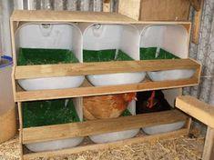désinfecter le nid des poules vinaigre