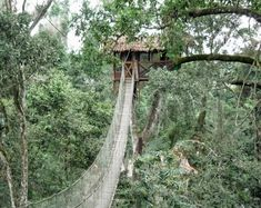 Inkaterra Canopy Treehouse in Tambopata National Reserve, Peru.