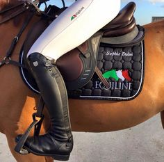 Sophie Dalm with new Equiline Dynamic saddle. #equestrian