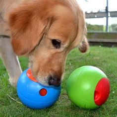 Foobler, Auto Re-Loading Puzzle Feeder Toy for Dogs