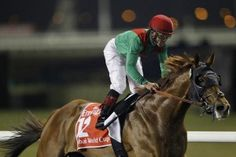 Animal Kingdom winning the world richest race the Dubai World Cup Race Horses, Horse Racing, Easter Monday, Dubai World, Richest In The World, Thoroughbred Horse, All Hero, Happy Things, Make You Smile