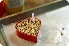 bird treats: 4 cups bird seed, 3/4 cup flour, 1/2 cup water, 3 tablespoons of corn syrup. Press into cookie cutter, push straw through where the hole should be, take off the cookie cutter, dry for six hours