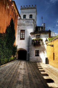 Barrio de Santa Cruz, antigua judería, Sevilla, España.