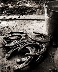 Horseshoe & Bucket Picture