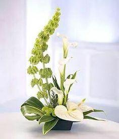 JP: Ikebana - Bells of Ireland Calla Lilies Anthuriums Button Mums. Hotel Flower Arrangements, Contemporary Flower Arrangements, Ikebana Flower Arrangement, Ikebana Arrangements, Beautiful Flower Arrangements, Beautiful Flowers, Modern Vases, Tall Floral Arrangements, Flower Arrangement Designs