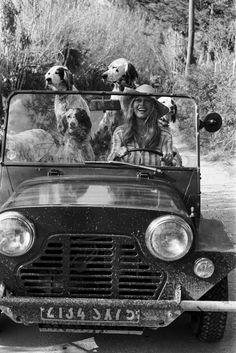 Brigitte Bardot in her Austin Mini Moke, Saint-Tropez, La Madrague 1960 Dog Photoshoot, Fondation Brigitte Bardot, Bridget Bardot, Hippie Man, Paris Match, English Setter, Vintage Dog, Vintage Cars, Retro Vintage