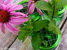 DIY Mason Jar Flower Frogs | Fresh Eggs Daily®