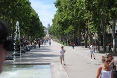 Avenue Feuchères, Nîmes