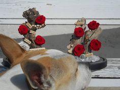 ❤ Stop And Smell The Roses ❤ #dog #lovemydog #roseslover #roses #loveroses #redroses #redcolor #passionrose #decotime #decoration #creativity #handmade #nofilters #smile #dream #happiness #love #loveiseverywhere #lovetocreate #flowershots #flowerinbox #infinityroses #foreverroses #lastsforever #wood #stopandsmelltheroses #floristshop #thessaloniki #anthos_theartofflowers Thessaloniki, I Love Dogs, Red Color, Red Roses, Creativity, Happiness, Smile, Decoration, Create