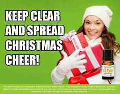 Start your christmas shopping now! #christmasmadeeasier  Wrapmymind.myitworks.com