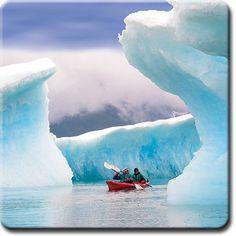 Columbia Glacier Kayak & Wildlife Cruise...yes!