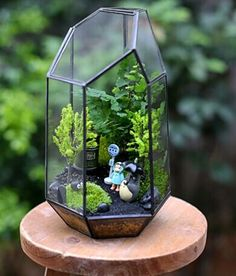 Vases – Big polygon succulent / airplant glass terrarium – a designer piece by b … - Modern Terrarium Diy, Glass Terrarium, Totoro, Little Presents, Little Gardens, Plants Are Friends, Vase, Air Plants, Fun Crafts