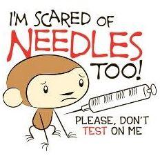 stop animal test