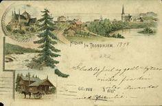 Sør-Trøndelag fylke Trondheim  TRONDHEIM, Hilsen fra. 3-bilder i farger postgått 1898
