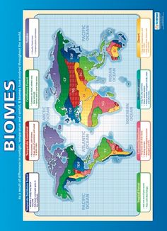 From our Geography poster range, the Biomes Poster is a great educational resource that helps improve understanding and reinforce learning. Geography Activities, Teaching Geography, World Geography, Gcse Geography Revision, Physical Geography, Gcse Revision, Map Skills, Study Skills, 6th Grade Science