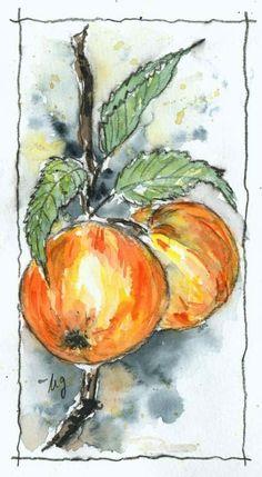 Watercolor Sketch, Floral Watercolor, Watercolor Paintings, Watercolour Tutorials, Allotment, Ink Art, Watercolours, Painting & Drawing, Art Boards