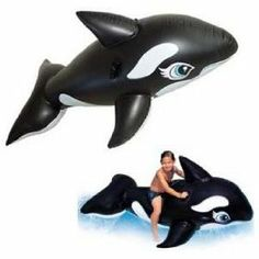 Things we need: Lakes toys... aka: Free willy