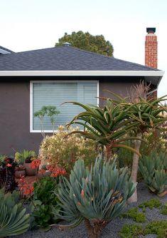 Sidewalk sensation, Flora Grubb Gardens | Remodelista Architect / Designer Directory