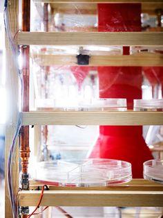 Food Machine by PJADAD