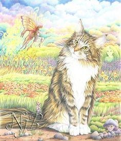 Nicole Jahan : Dessins de chats aux crayons de couleur