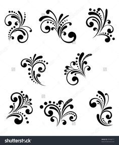 Set of beautiful floral elements isolated on white. Vector version also available in gallery
