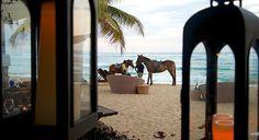 View from Eclipse Restaurant at Villa Montaña Beach Resort in Isabela, Puerto Rico Eclipse Restaurant, Puerto Rico, Enchanted Island, Beautiful Islands, Beach Resorts, Montana, Caribbean, Villa, Journey