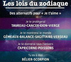 Zodiac Signs Horoscope, Zodiac Star Signs, Zodiac Capricorn, Astrology Signs, Scorpio Quotes, Zodiac Quotes, Cancer, Positive And Negative, Introvert