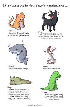 Animal new year resolutions..